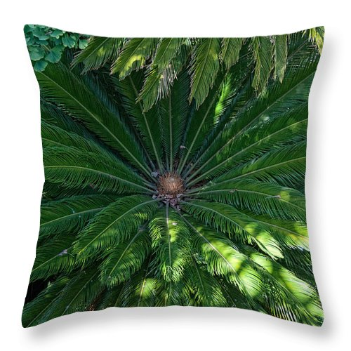 Animals Throw Pillow featuring the digital art La Brea Tar Pits by Carol Ailles