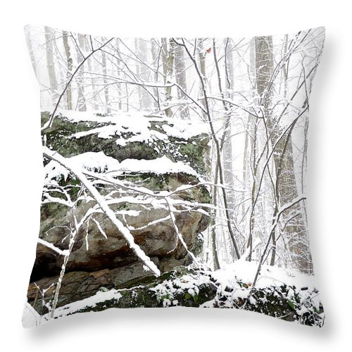 West Virginia Throw Pillow featuring the photograph Autumn Snow Monongahela National Forest by Thomas R Fletcher
