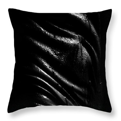 Nude Photographs Throw Pillow featuring the photograph Liquid Latex by Pavel Jelinek