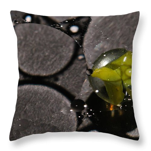 Absorb Throw Pillow featuring the photograph A B S O R B by Charles Dobbs
