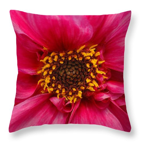Big Throw Pillow featuring the photograph A Big Pink Flower by Mike Nellums