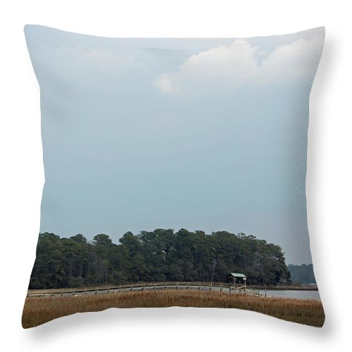 Landscape Throw Pillow featuring the photograph A Carolina Scenic by Suzanne Gaff