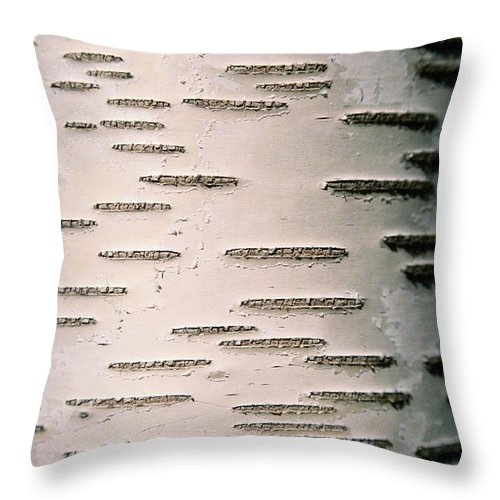 massachusetts Throw Pillow featuring the photograph A Close View Of White Birch Bark by Tim Laman
