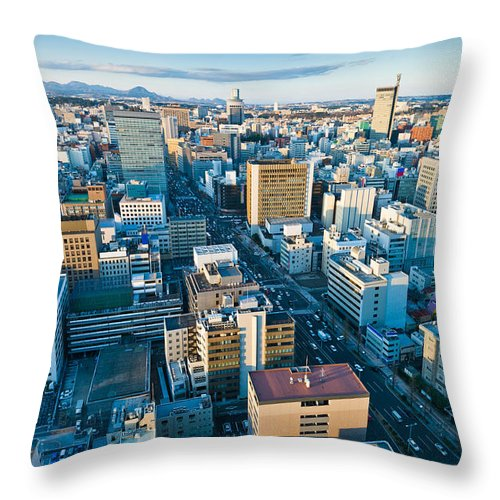 Aerial Throw Pillow featuring the photograph A Cold Day In Sendai Japan by U Schade