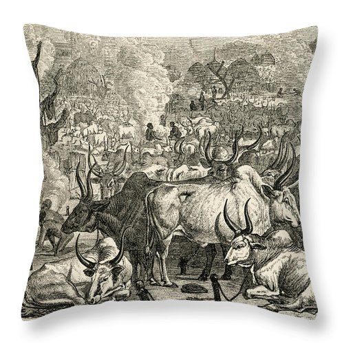 Dinka Throw Pillow featuring the photograph A Dinka Cattle Park, Southern Sudan by Ken Welsh