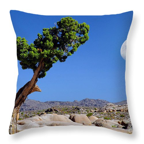 Joshua Tree Throw Pillow featuring the photograph A Dr. Seuss Moment by Jon Holiday