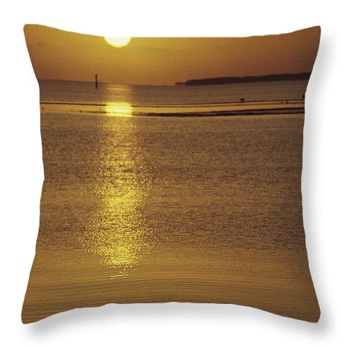 Geography Throw Pillow featuring the photograph A Heron Wades In The Shallow Water by Medford Taylor
