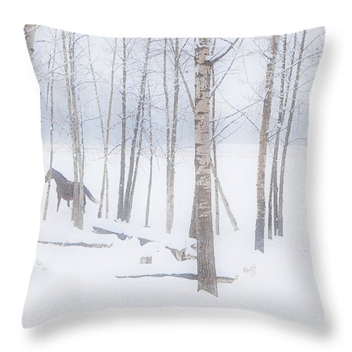 Back To Camera Throw Pillow featuring the photograph A Horse Stands Beside A Forest Of Bare by Steve Nagy