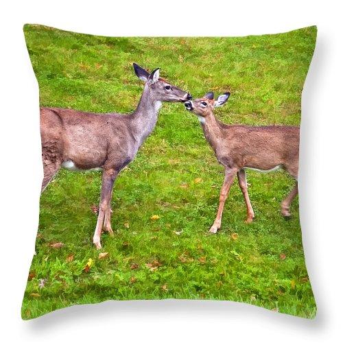 West Virginia Throw Pillow featuring the photograph A Kiss For Mom by Steve Harrington