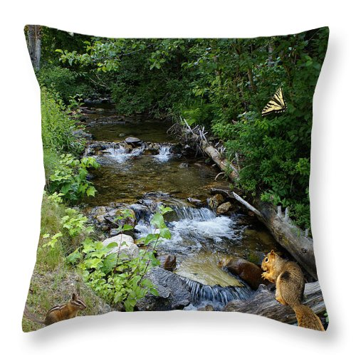 Wildlife Throw Pillow featuring the photograph A Lazy Summer Day On Mt Spokane by Ben Upham III