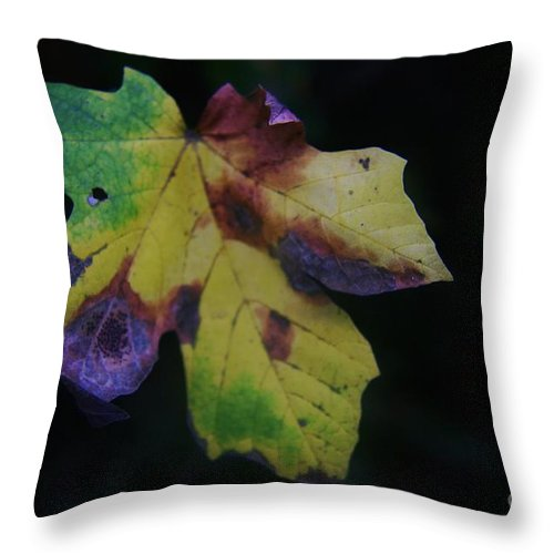 Leaves Throw Pillow featuring the photograph A Leaf Left Black And Blue by Jeff Swan