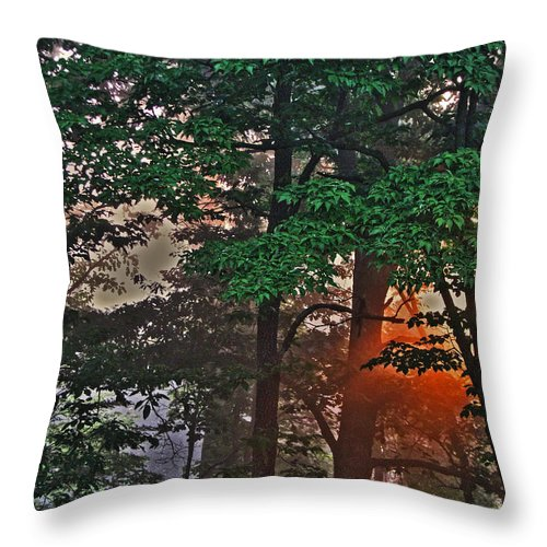 Light Throw Pillow featuring the photograph A Light In The Forest by William Fields