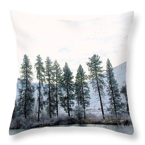 Trees Throw Pillow featuring the photograph A Line Of Trees In Winter by Jeff Swan