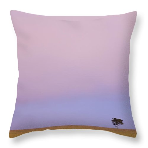 Beauty In Nature Throw Pillow featuring the photograph A Lone Tree Against The Horizon At by David DuChemin