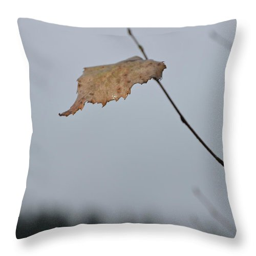 Autumn Throw Pillow featuring the photograph A Lonely Leaf by Michael Goyberg