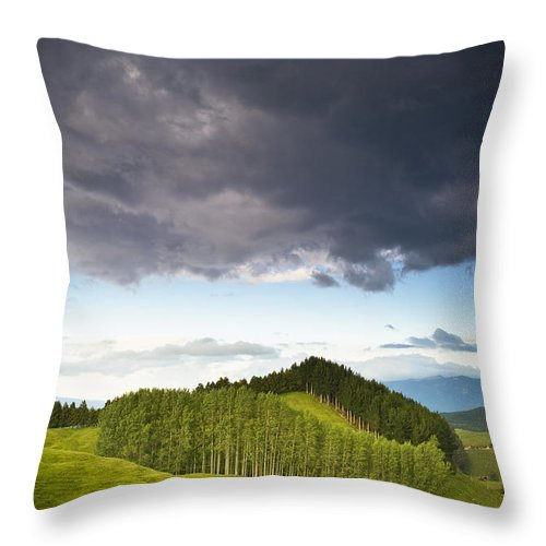Color Image Throw Pillow featuring the photograph A Lush Green Landscape With Grassy by David DuChemin