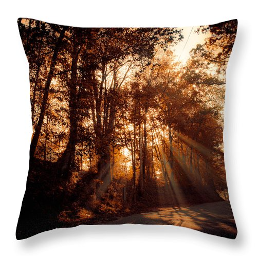 Ray Throw Pillow featuring the photograph A New Dawn by Trish Tritz