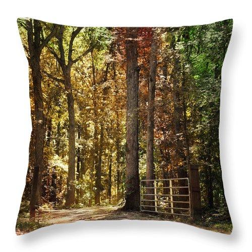 Autumn Throw Pillow featuring the photograph A New Season by Jai Johnson