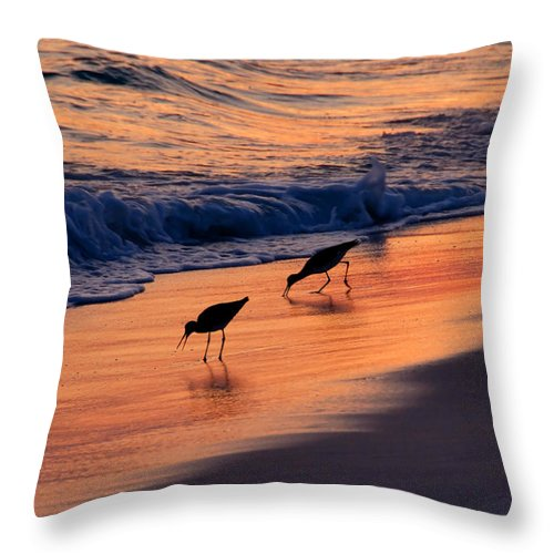 Fine Art Photography Throw Pillow featuring the photograph A Pair by David Lee Thompson