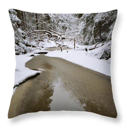 Scenes And Views Throw Pillow featuring the photograph A Partially Frozen Stream Runs by Mattias Klum