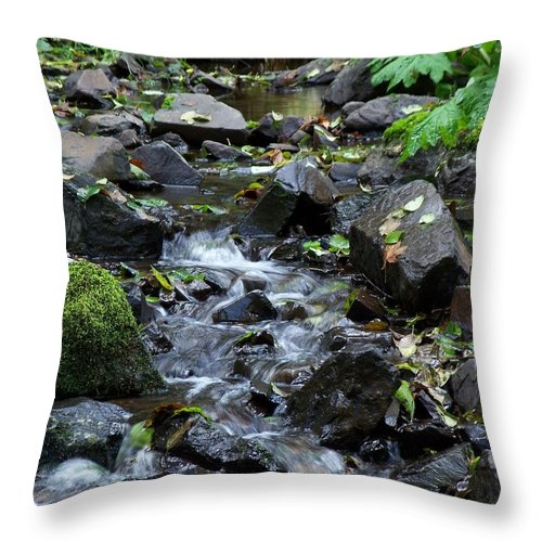 A Peaceful Stream Throw Pillow featuring the photograph A Peaceful Stream by Chalet Roome-Rigdon