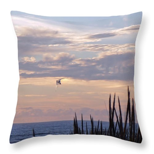 Coast Throw Pillow featuring the photograph A Perfect Day by Pamela Patch