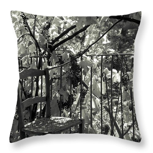 Grapevine Throw Pillow featuring the photograph A Place Like This by Michele Mule