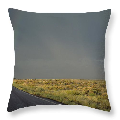 Nobody Throw Pillow featuring the photograph A Rainbow Touches A Rain Soaked Road by Bill Hatcher