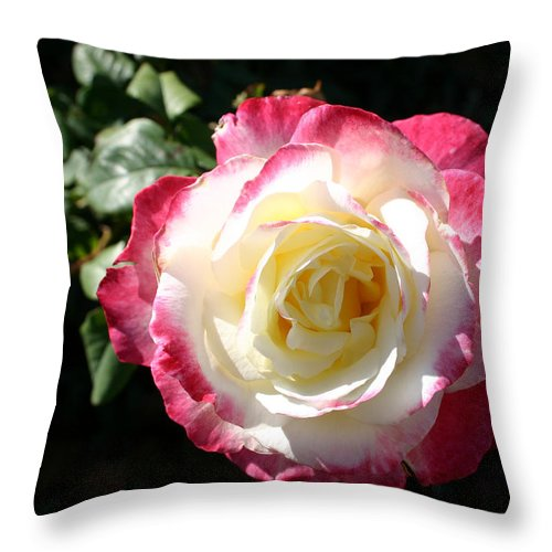 Rose Throw Pillow featuring the photograph A Rose From Tyler by Nina Fosdick