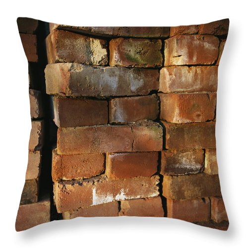 Masonry Throw Pillow featuring the photograph A Stack Of Bricks by Joel Sartore