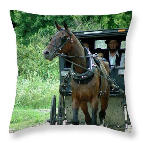 Digital Throw Pillow featuring the photograph A Sunday Journey by Dennis Pintoski