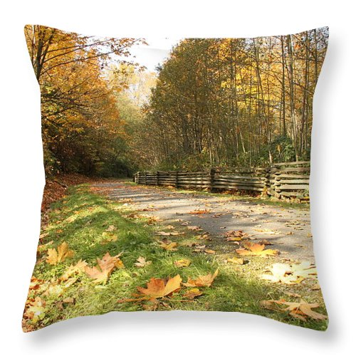 Fall Throw Pillow featuring the photograph A Walk In The Park by Nancy Harrison