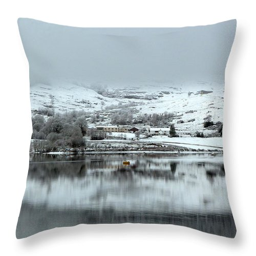 Snow Throw Pillow featuring the photograph A Winter's Scene by Lynn Bolt