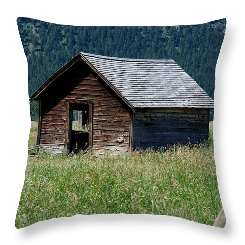 Nature Throw Pillow featuring the photograph Abandoned Barn by Dany Lison