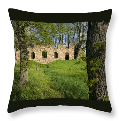 Cider Throw Pillow featuring the photograph Abandoned Cider Mill by Jim Moore