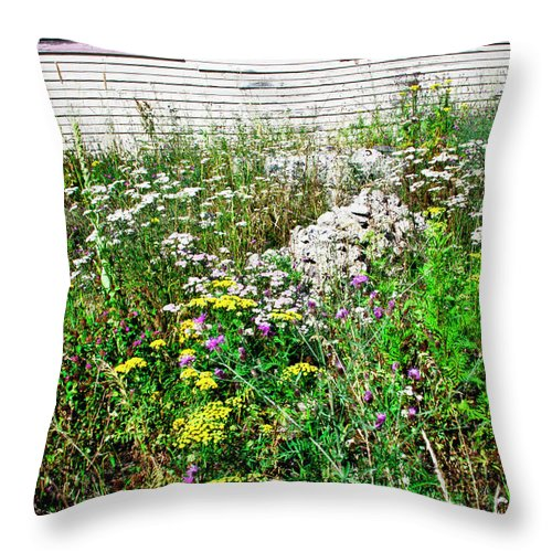 Wild Flowers Throw Pillow featuring the photograph Abandoned Lot by David Patterson