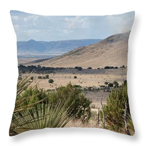 Alpine Throw Pillow featuring the photograph Above Alpine II by Brandy Beverly
