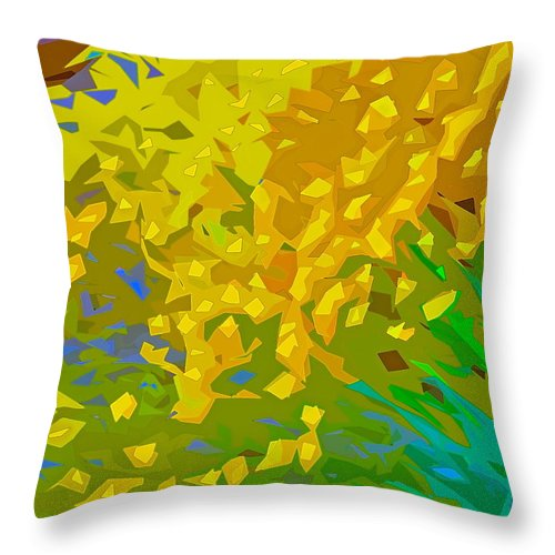 Abstract Throw Pillow featuring the photograph Abstract 167 by Pamela Cooper