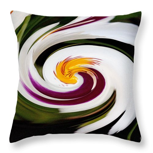 Abstract Throw Pillow featuring the photograph Abstract 2 by Robert Sander