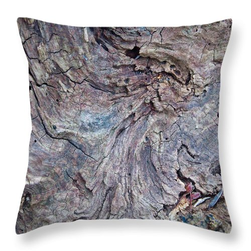 Wood Throw Pillow featuring the photograph Abstract In Blue 1 by Douglas Barnett