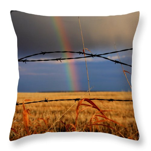 Rainbow Throw Pillow featuring the photograph Access Denied by James Anderson