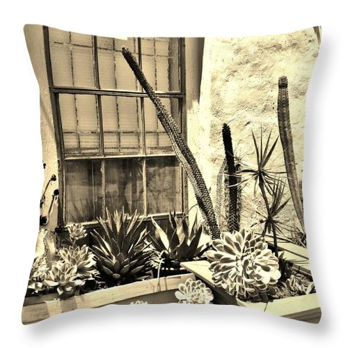 Adobe Throw Pillow featuring the photograph Adobe by Caroline Lomeli