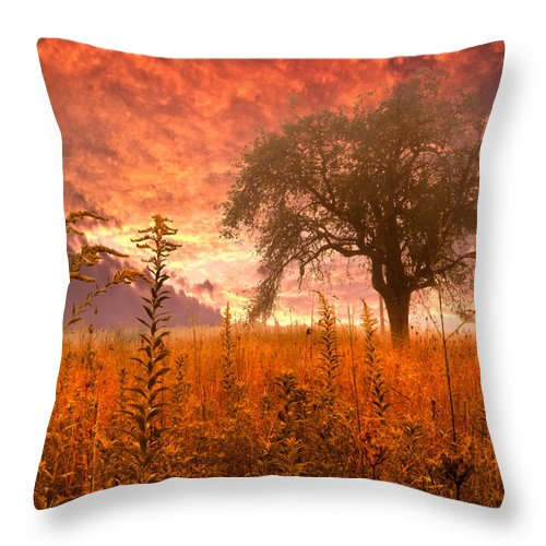 Andrews Throw Pillow featuring the photograph Aflame by Debra and Dave Vanderlaan