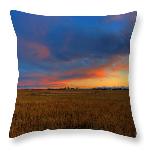 Alberta Throw Pillow featuring the photograph After Glow by James Anderson