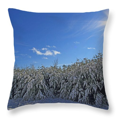 Winter Throw Pillow featuring the photograph After The Storm by Lloyd Alexander