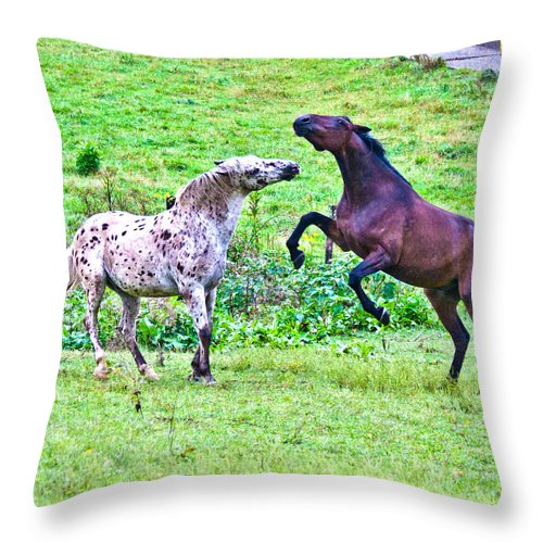 Horses Throw Pillow featuring the photograph After Working by Betsy Knapp