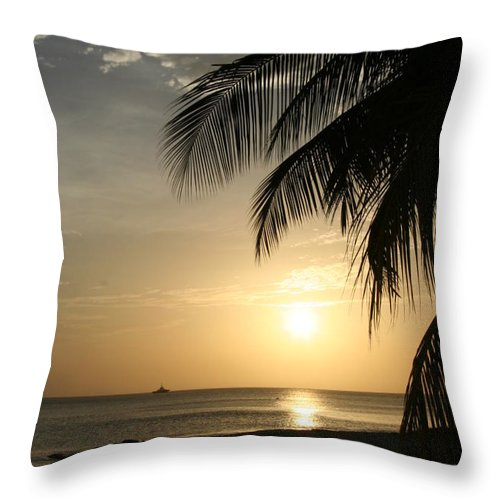 Palm Throw Pillow featuring the photograph Afternoon At Santa Marta by Elizabet Chacon
