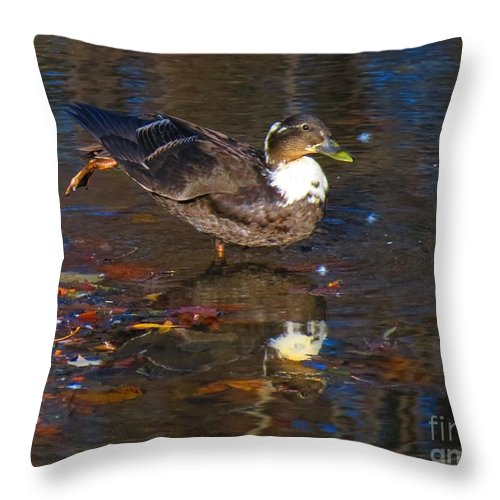 Mallard Throw Pillow featuring the photograph Ahh Sunset by Rrrose Pix
