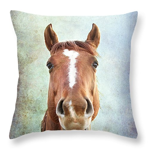 Amuse Throw Pillow featuring the photograph Ahhhhhh by Darren Fisher