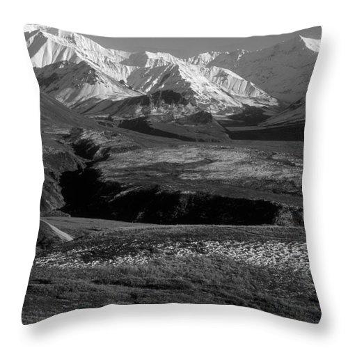 Alaska Throw Pillow featuring the photograph Alaska Valley by Sandra Bronstein